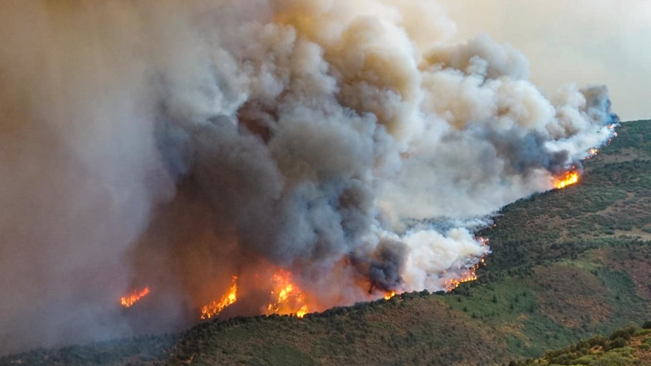 Utilities and wildfire in Colorado