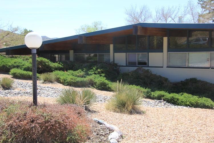Albuquerque front yard